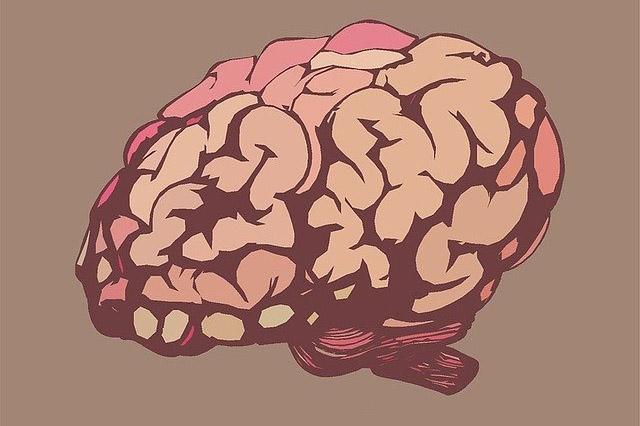 Brain Tissue Research