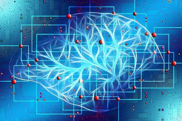 Brain Surgery - Visualize