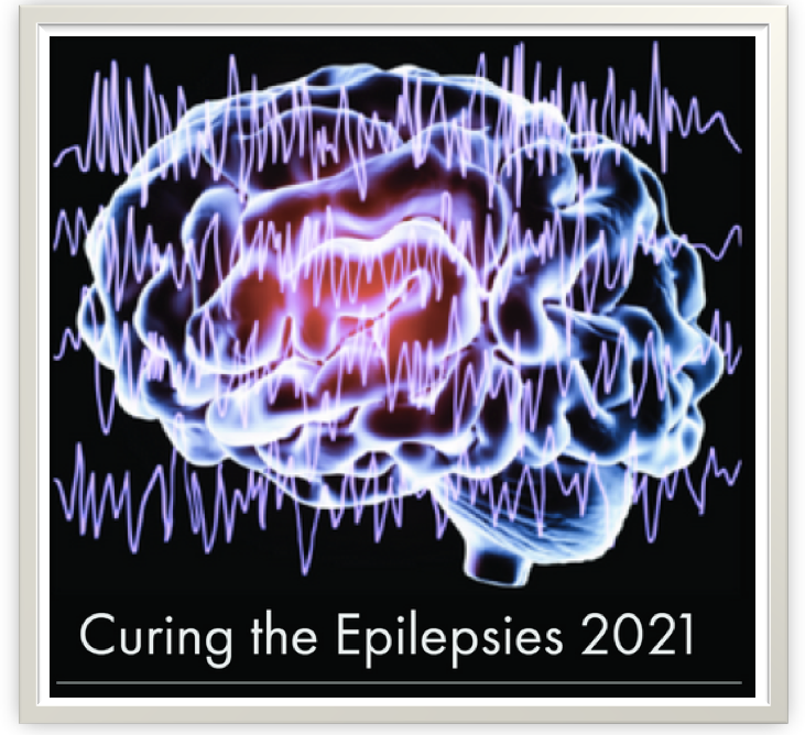 curing the epilepsies - NIH